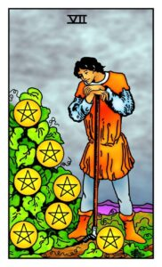 7-of-pentacles-1