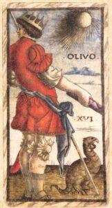 """Карта """"Olivo"""" из колоды Таро Сола-Буска"""